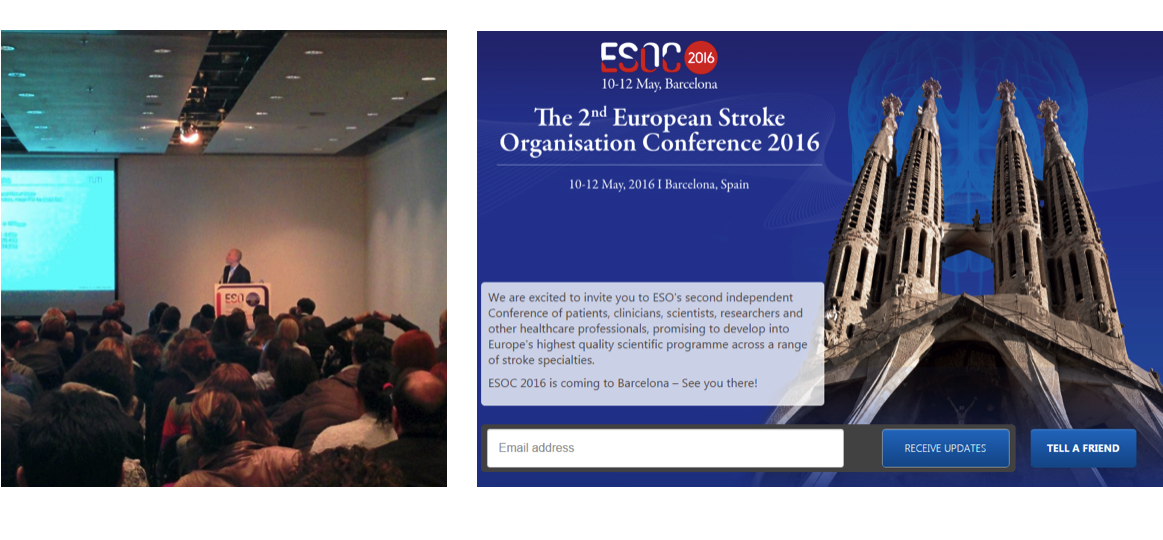 Changing the Face of the European Stroke Organisation